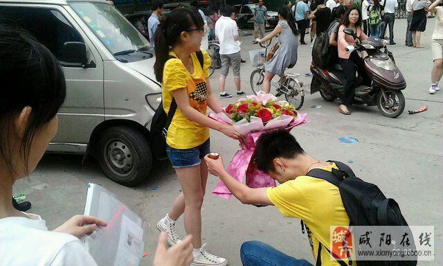 咸阳实验中学校花_咸阳实验中学代码咸阳渭城中学的学校代码是