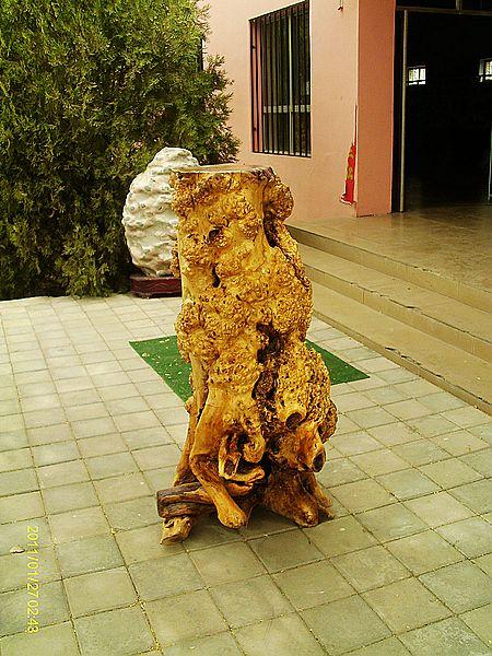沙枣树根雕图片欣赏展示
