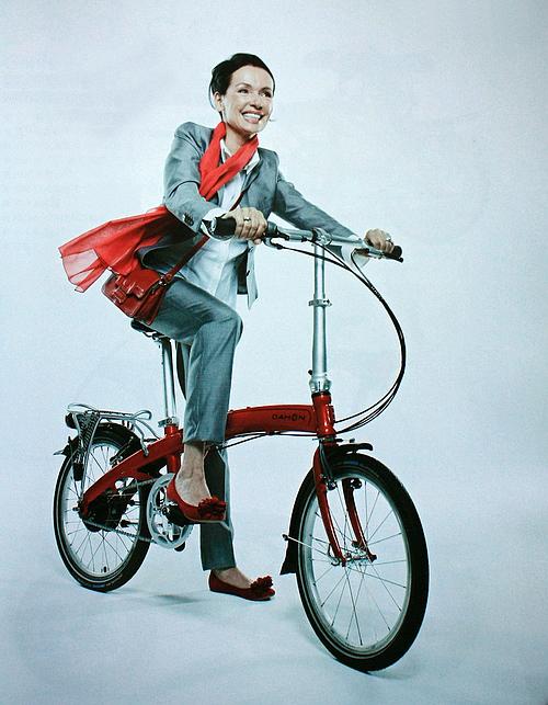 大行折叠自行车,变速车