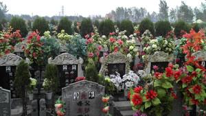 哪家公墓好