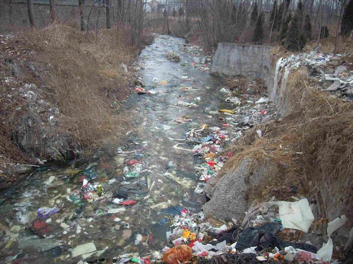 论文 - 农村垃圾污染与治理 摘要:随着农村经济的不断发展,农村环境也
