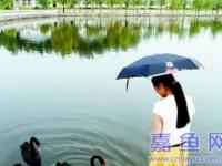 湖北日报整版:住别墅的农民(图文)