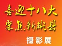 彬县首届摄影展