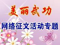 武功笔友群、武功在线网站,《美丽武功》网络征文活动专题!