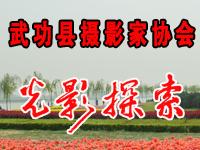武功县摄影家协会光影探索交流研讨活动专题