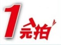 2013襄汾在线-1元拍