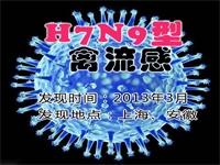 �P于H7N9禽流感