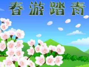 五月春游活动