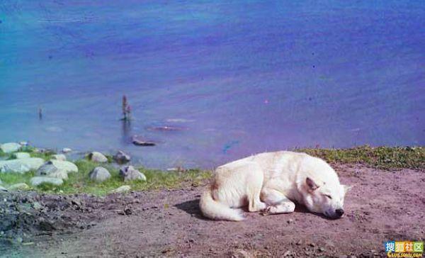珍贵旧影:1910年俄罗斯超高清彩照