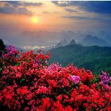 【桂林】【西湖】风景名胜!