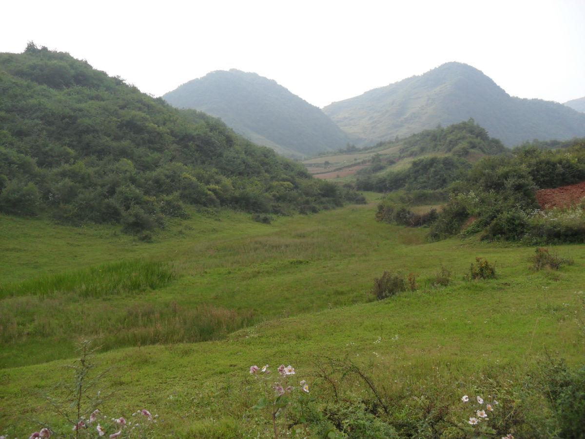 武都美丽的农村风景