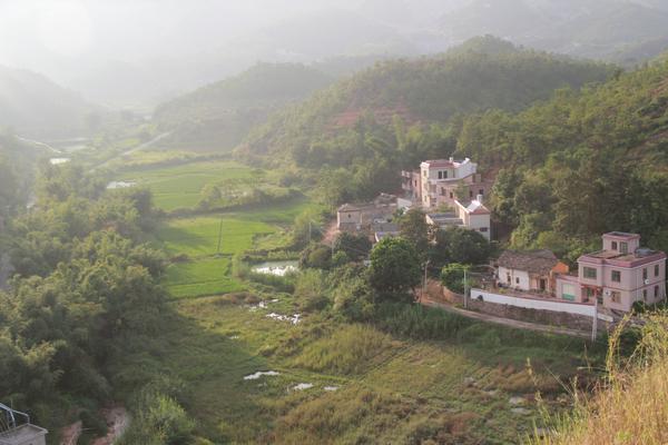 佗城镇枫深村景色