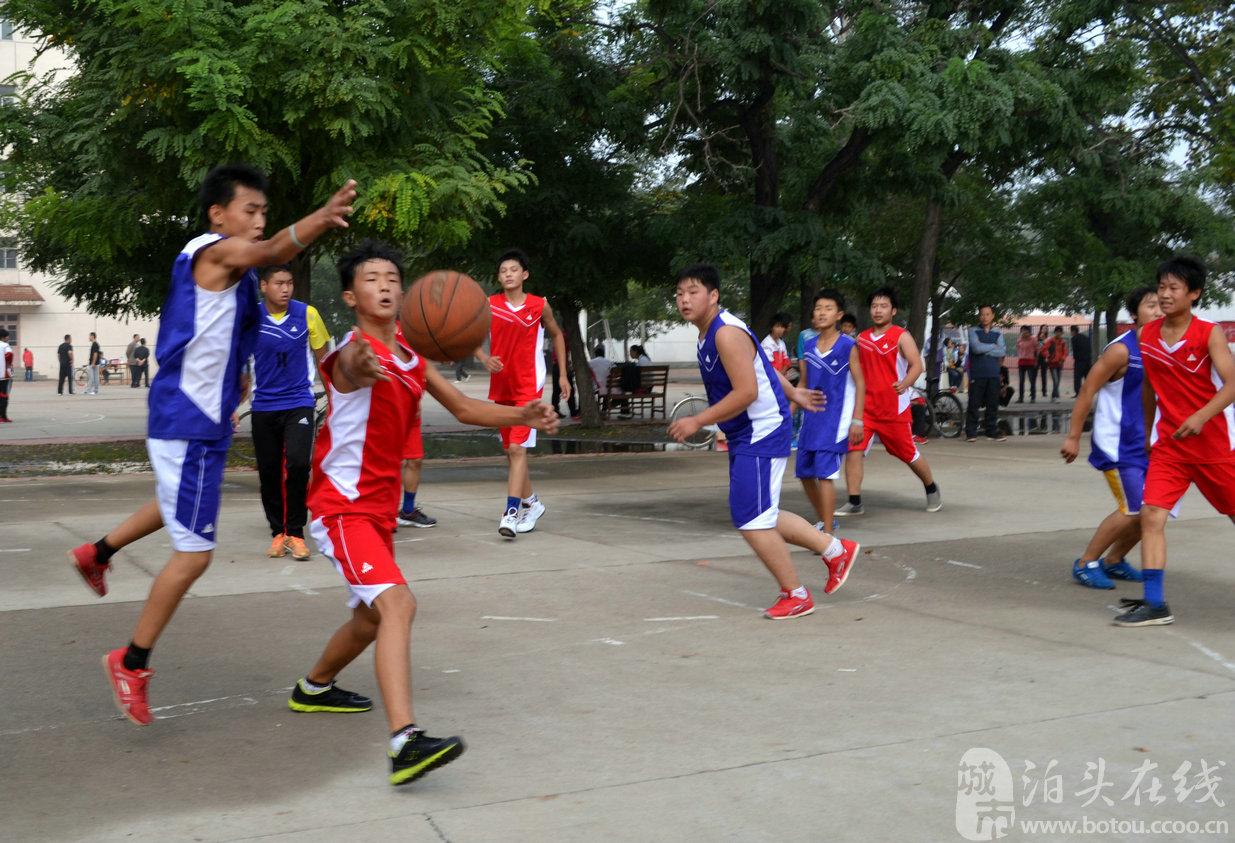 在正式比赛中,以初中生为主体参与的篮球比赛中一般使用的篮球为图片