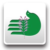 大冶铜草花环保协会