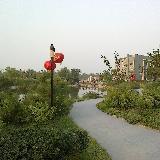 2012国庆节人民公园实拍