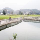 ���山塘保灌溉