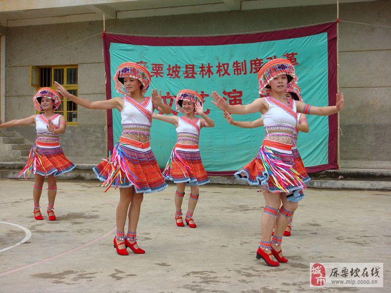 [原创]民族舞蹈—赶花山的咪彩