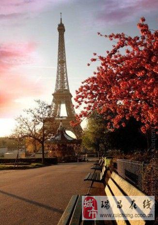 主题: 梦幻巴黎,梦幻埃菲尔铁塔!爱摄影,爱旅行