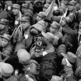 [转贴]1954年回台湾的志愿军战俘队列中一只小狗惹人注目