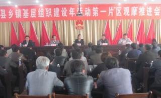 全县乡镇基层组织建设年活动第一片区(巩昌、菜子、碧岩、首阳)观摩推进会