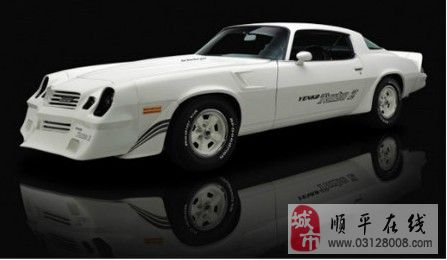 经典藏车 1981雪佛兰yenko camaro 汽车天下 顺平论坛 顺高清图片