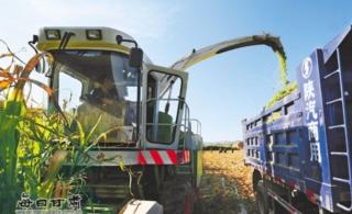 陇西县通安驿镇农民在田间采用机械设备收割秸秆