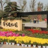 带你逛徐州(三十六)徐州市植物园