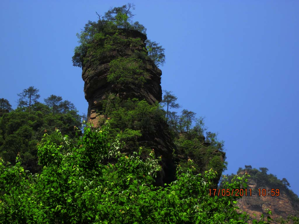 亚公山森林公园分享展示