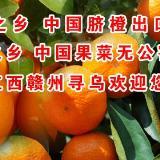 中国蜜桔之乡 脐橙之乡,寻乌人民欢迎您!