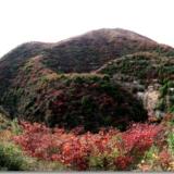 太极峡红叶