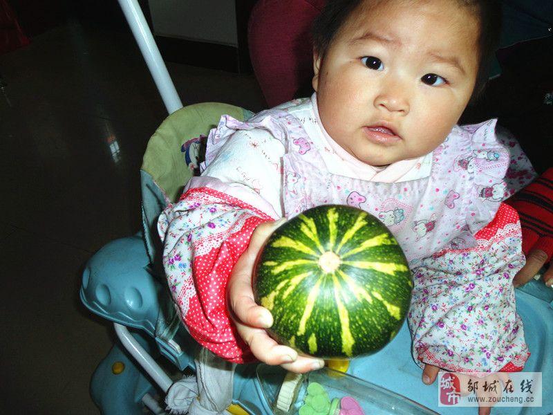 我家种的瓜,大家猜猜是什么瓜