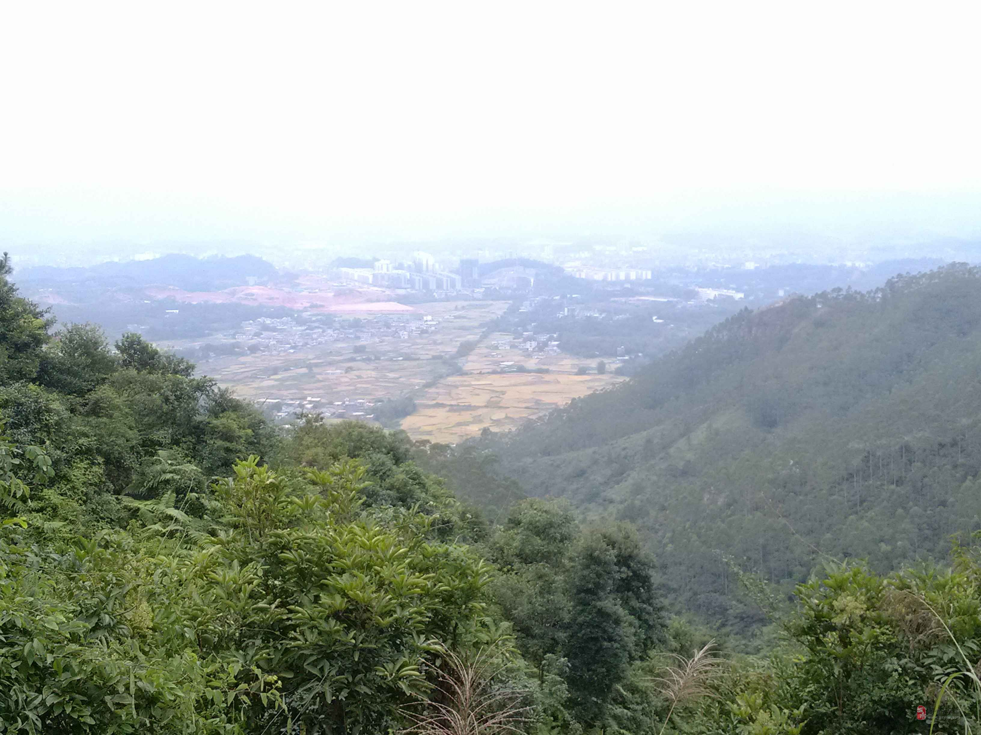 [贴图]东山风景图