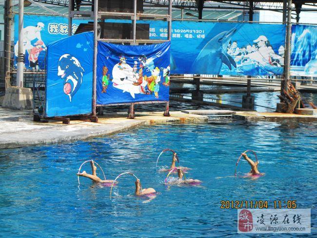 壁纸 海底 海底世界 海洋馆 水族馆 650_488