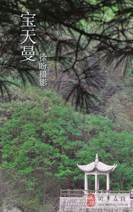 为香港杂志社拍宝天曼