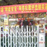 """溧水县首届""""明星宝宝""""网络投票颁奖活动在大地双语幼儿园成功举办"""