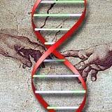 科学家发现特别基因 或能预测人类何时死亡