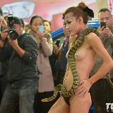2012�F�汽�文化�裸模表演吞蛇