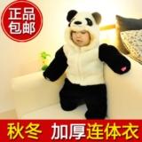 风靡网络的熊猫服席进岛城啦