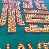 赣南国际脐橙节赣州最新进展(组图)