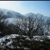 青岗坪穿越清峪 看冰雪妖娆!