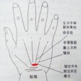 [分享]经络养生妙计-六大穴位缓解身体不适