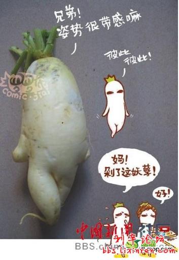 那些成精的萝卜