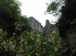 自然的洛口山