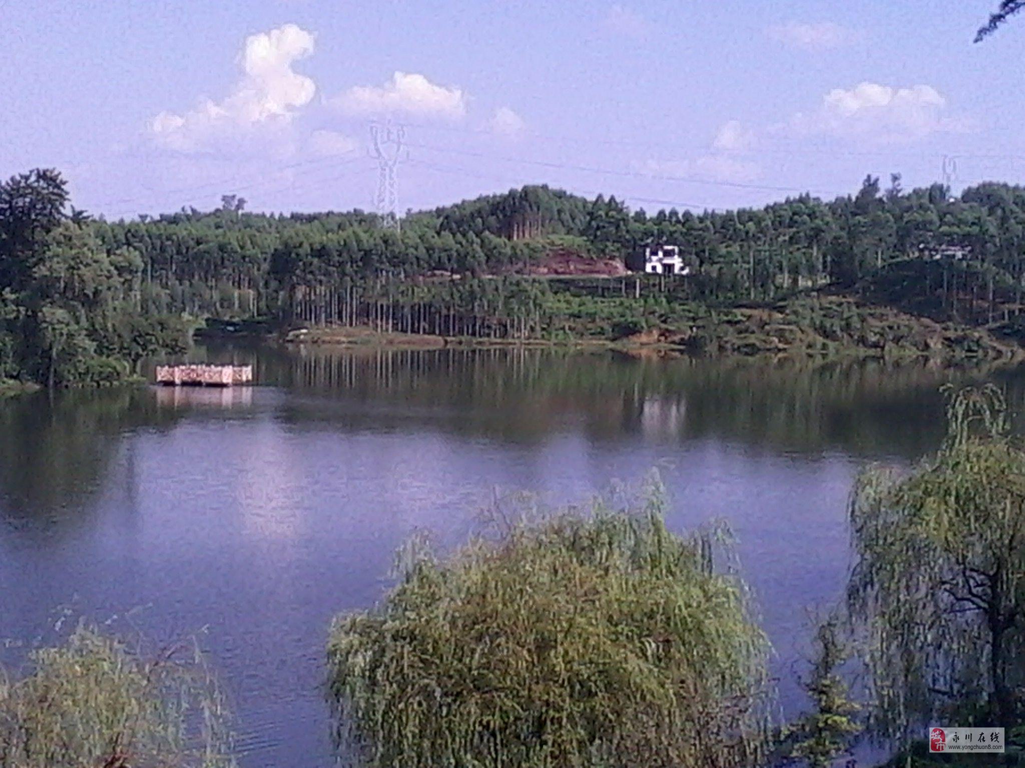 卫星湖风景