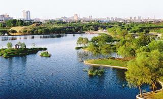 澳门大小点平台:湿地正在消失
