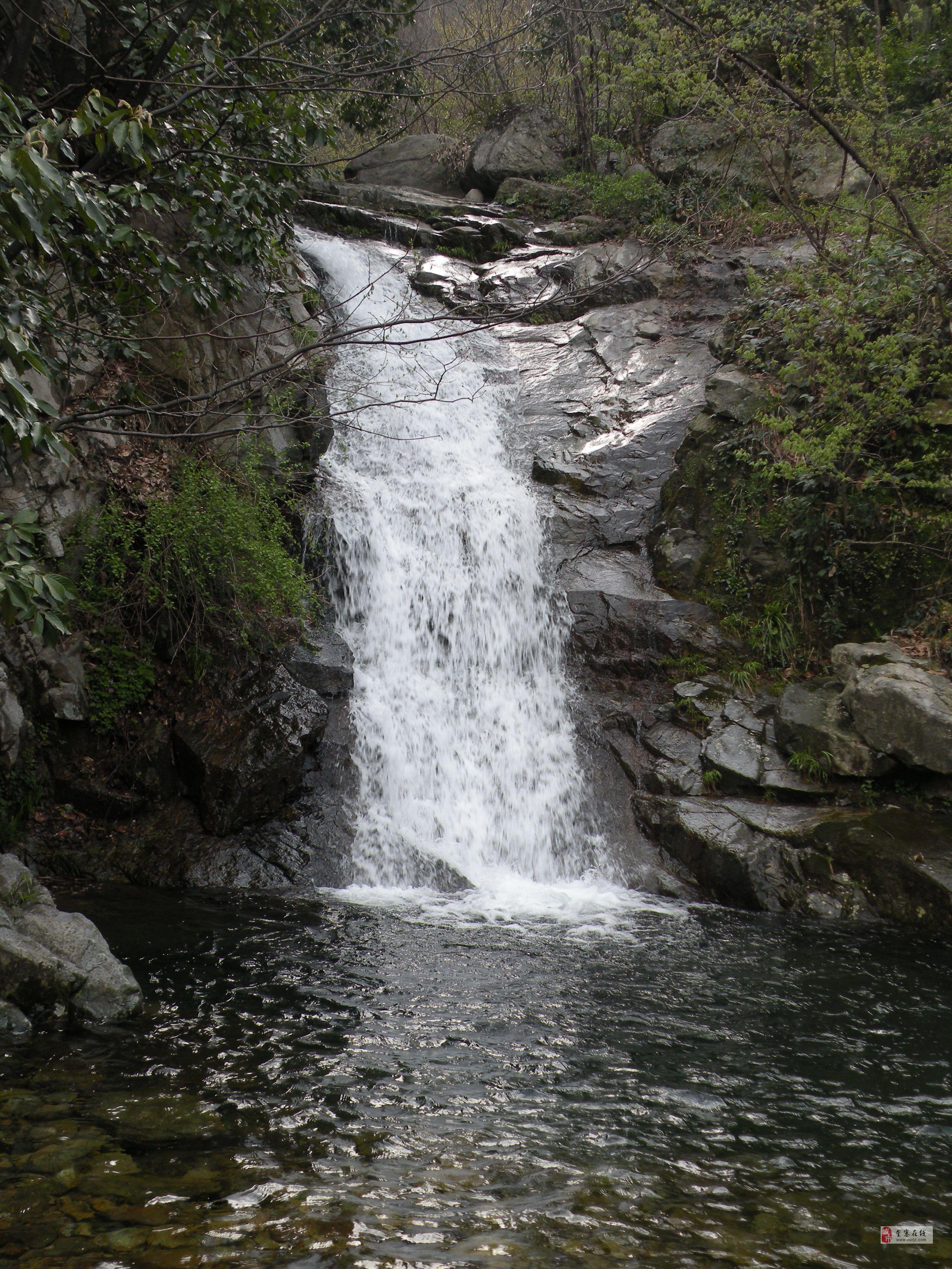 据统计,铁冲乡镜内有野生动物十几种,植物1000多种.