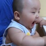 每日读一贴!全世界都在玩的益智游戏大全,0-3岁快速成为聪明宝宝哦!