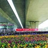 郑州农民工露宿地装上防护网,到底是想对付谁?