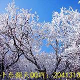 [贴图]清岗坪登顶赏雪