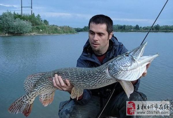 [贴图]钓鱼是个体力活……